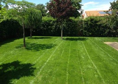 Création de semi de gazon à Poitiers